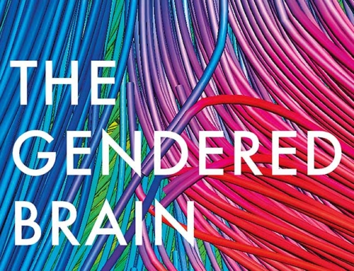 The Gendered Brain and the Seven Deadly Sins of Psychological Science